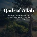 Qadr of Allah do we have choice in life?